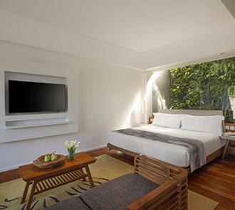 Heavenly Ocean View Pool Suite - King Bed