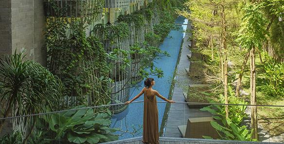 Lagoon Pool - Signature Maya Sanur View