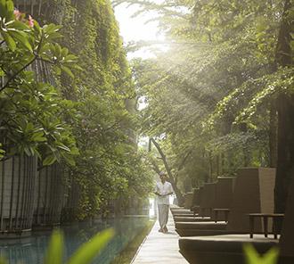 Lagoon Pool - Morning ray of light