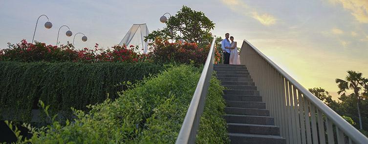 Rooftop garden - Revel in Bliss