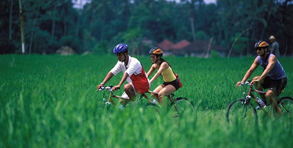Cycling Tour - Unbeaten Track