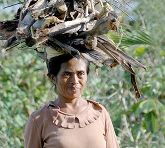 Female Balinese - Balancing Skill