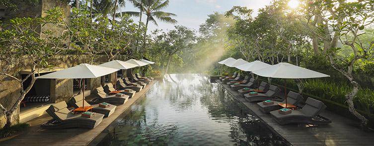 Main Swimming Pool - Infinite Views of the Ubud Valley