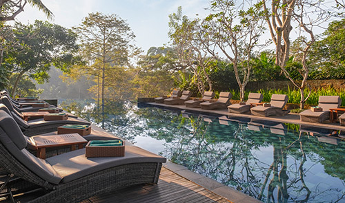 Main Swimming Pool - Pool Side Tranquility
