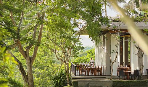 Maya Sari - Canopy Deck